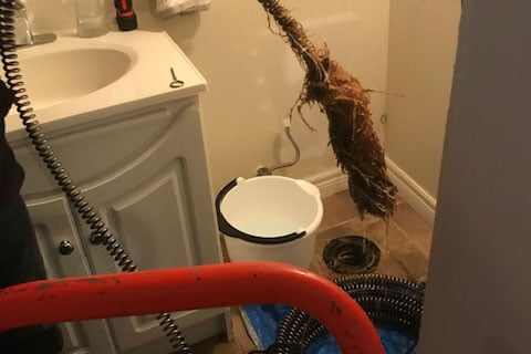 Snake main drain root removal -featured - Can't Flush? We Rush!™